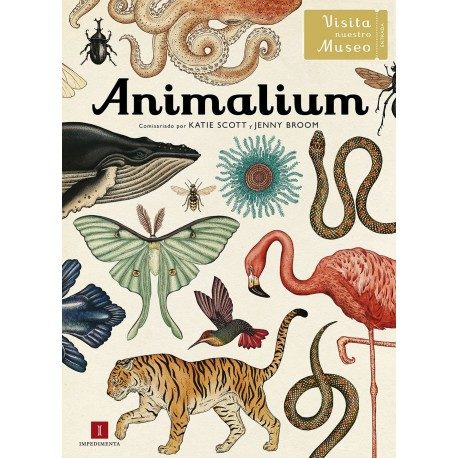 animalium-impedimenta-visita-museo