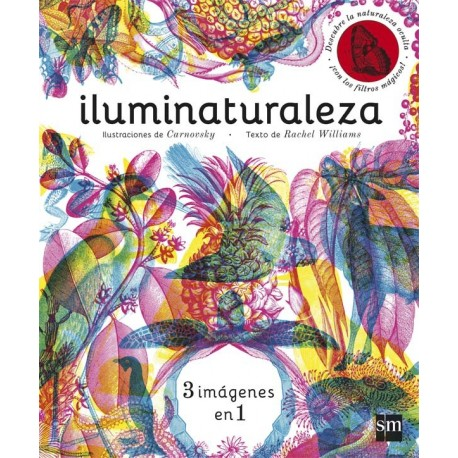 ILUMINATURALEZA SM Interior Libro